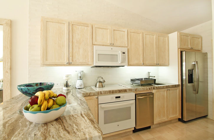 Terrasol Unit 207 Kitchen