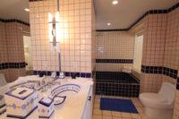 Terrasol Condo Bathroom