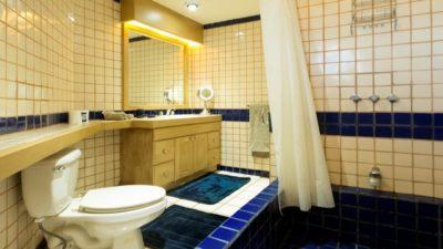 Terrasol Unit 250 Bathroom
