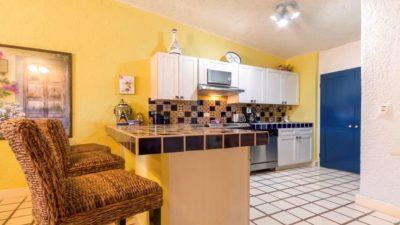 Terrasol Condo Kitchen