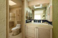 Terrasol Unit 219 Bathroom